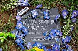 Will Shade Gravestone Benefit